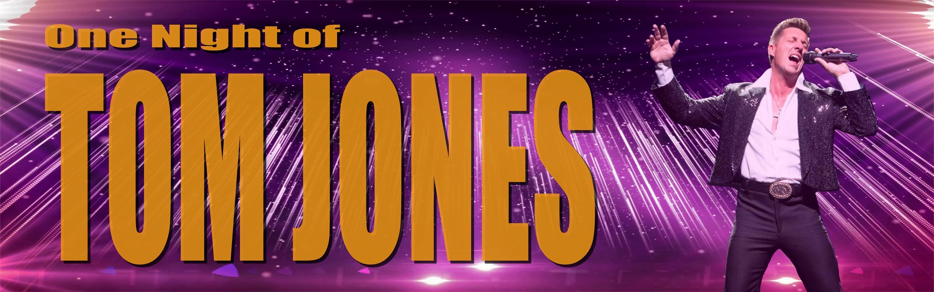 One Night of Tom Jones